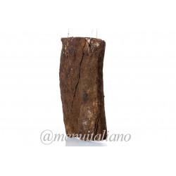 Pancetta (bauchspeck) mit pfeffer. flach 3.3 kg